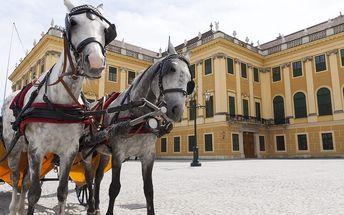 Vídeň na Velikonoce + prohlídka zámku Schönbrunn: 1denní výlet z Brna pro 1 osobu, 15.4./17