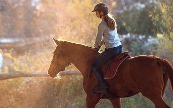 Hodinová vyjížďka na koni