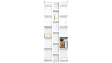 Bílá knihovna De Eekhoorn Grenen, základní modul - doprava zdarma!