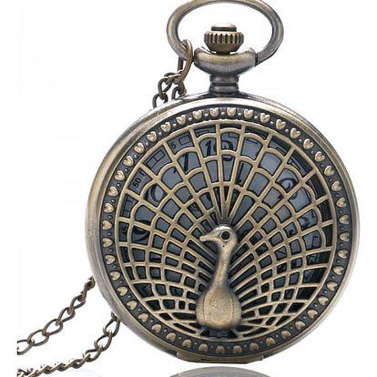 Retro kapesní hodinky s motivem páva
