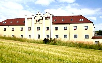 Pobyt v hotelu Allvet na 3 dny pro 2 osoby, snídaně, výtečná večeře, finská sauna, vířivka aj.
