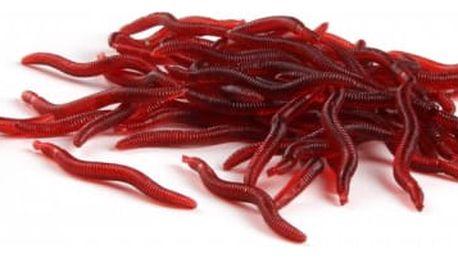 Gumová rybářská návnada v podobě žížaly - 100 kusů