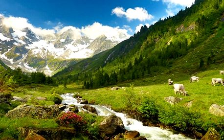 Zájezd na Medvědí soutěsku v Rakousku a za krásami Štýrska pro jednoho
