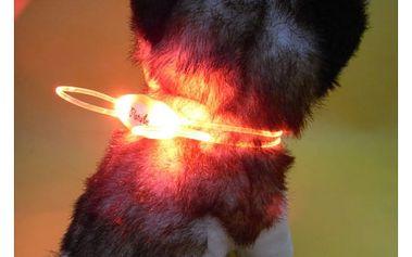 Svítící dvojitý obojek pro psy