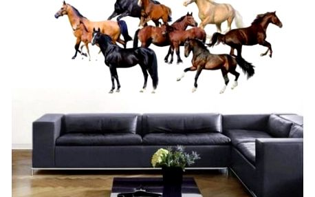 Samolepka na zeď s překrásnými koňmi