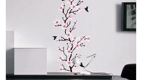 Samolepka na zeď - Barevní kolibříci