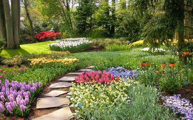 4denní zájezd Holandsko – Květinový park Keukenhof s návštěvou Amsterdamu