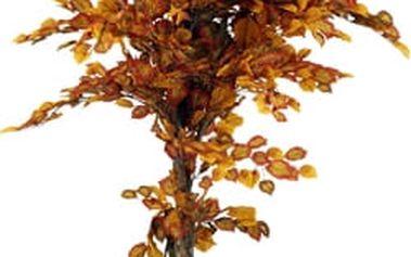 Strom umělý - Líska, nezasádrovaná