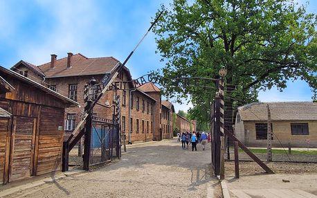 Zájezd do Osvětimi a královského města Krakov pro JEDNOHO