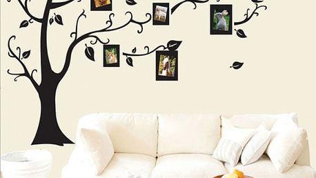 Samolepka na zeď - strom s fotorámečky