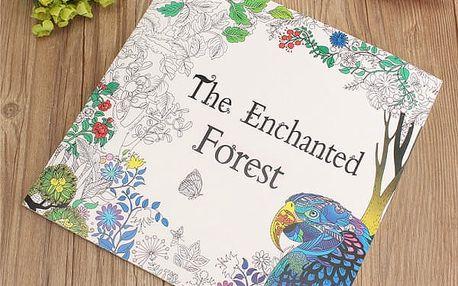 Omalovánky pro děti i dospělé - Kouzelný les