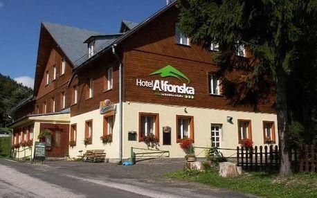 Dovolená pro dva s polopenzí v 3*hotelu Alfonska, odpolední káva a dezert, vířivka karafa vína.