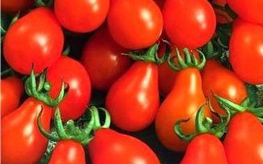 Rajče tyčkové hruškovité Radana - 50 semen - dodání do 2 dnů