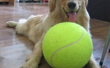 Obrovský nafukovací tenisák pro psy