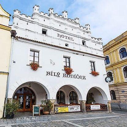 3–6denní pobyt pro 2 osoby se snídaněmi a slevami v hotelu Bílý koníček*** v Třeboni