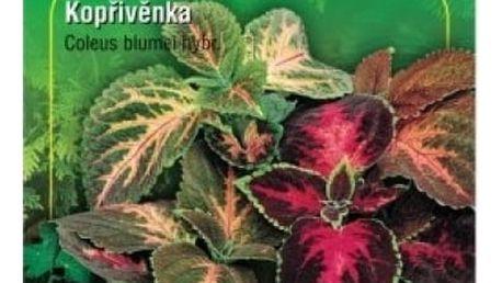 Kopřivěnka zkřížená Mix - 100 semen - dodání do 2 dnů