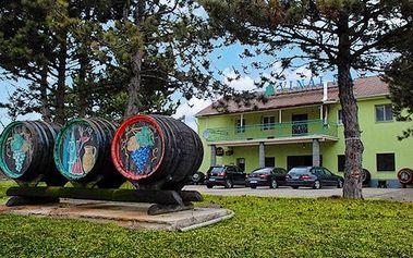 3–4denní pobyt s polopenzí a vínem v penzionu u Tomčalů na jižní Moravě pro 2