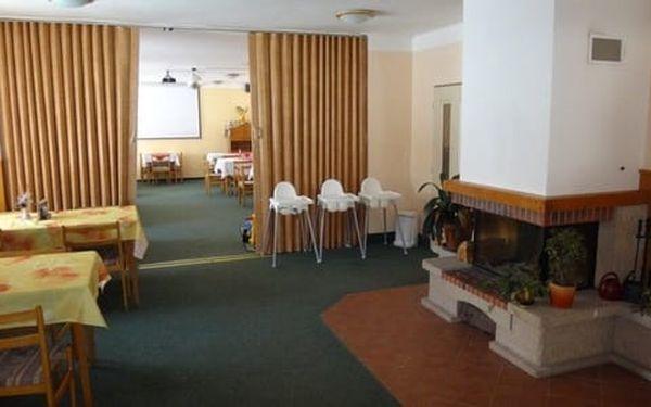 Hotel Alfonska*** u rozhledny Žalý s polopenzí, bazénem i vířivkou2
