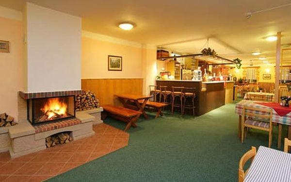 Hotel Alfonska*** u rozhledny Žalý s polopenzí, bazénem i vířivkou4