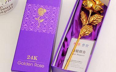 Růže se stonkem ve zlaté barvě - Různé barvy květů