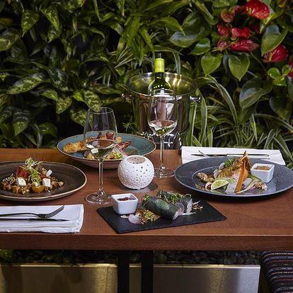 Vegetariánské degustační menu v restauraci Etnosvět