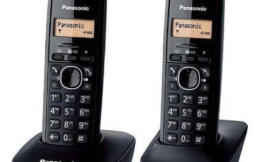 Panasonic KX-TG1612FXH