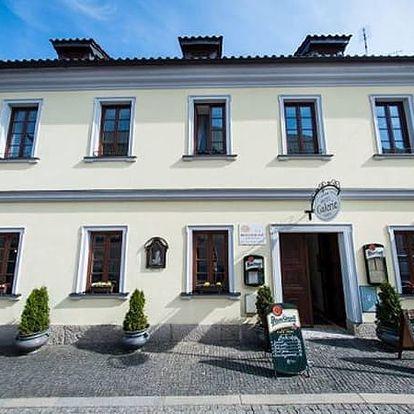 Dovolená pro dva se vstupem do lázní s polopenzí v 4*hotelu Galerie, lahev vína, cyklotrasy aj.