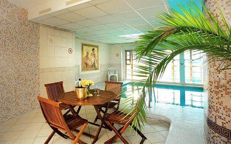 3 až 6denní pobyt s wellness a polopenzí v hotelu Praha*** v Božím Daru pro 2