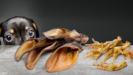 Balíčky sušených pamlsků pro psí kamarády