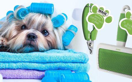 Kartáče na srst nebo kleštičky na drápky pro psy