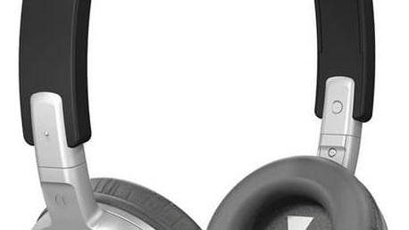 Sluchátka JBL T300A (500363237650) černá/stříbrná