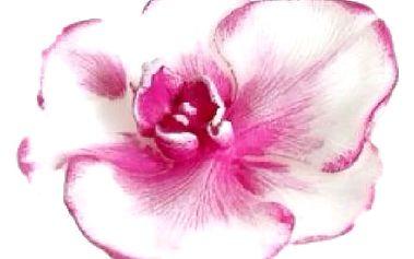 Svíčka květ orchidej oživí a doplní Váš interiér a zpříjemní atmosféru Vašeho domova.