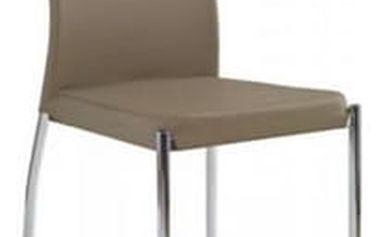 Kovová židle K120