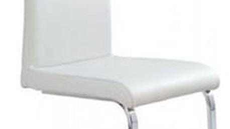 Kovová židle K106