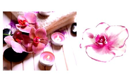 Svíčka květ orchidejoživí a doplní Váš interiér a zpříjemní atmosféru Vašeho domova.Pro všechny milovníky orchidejí.
