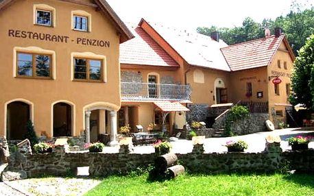 Dovolená pro dva v penzionu Nemanský Mlýn, ubytování, polopenze, láhev vína, venkovní bazén aj.