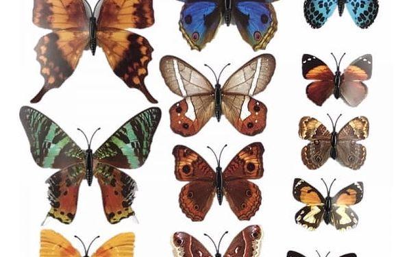 3D nalepovací motýlci - 25 variant
