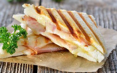 2× sýrové panini se zeleninou a šunkou či nivou