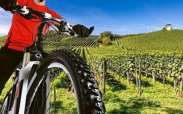 3–6denní cyklistický pobyt pro 2–4 osoby v penzionu Na Francouzské na jihu Moravy