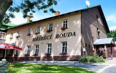 3–4denní pobyt s wellness v hotelu Hříběcí bouda*** v Krkonoších pro 2 nebo rodinu