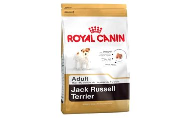 Granule Royal Canin Jack Russell Terrier 3 kg