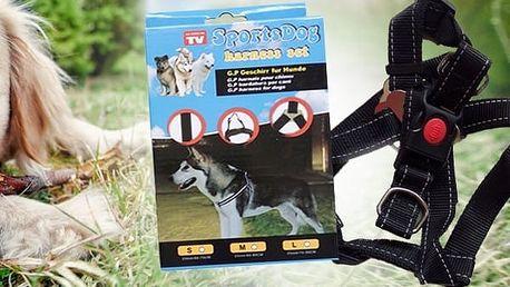 Nastavitelný postroj pro psa