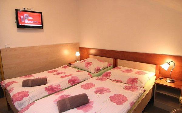 Hotel Švejk