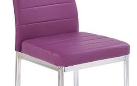 Kovová židle K70 C fialová