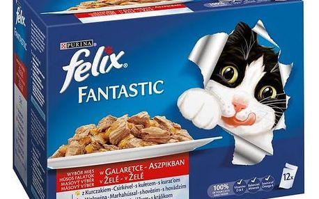 Felix FELIX Fantastic masový výběr 12 x 100g