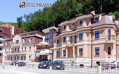 Trenčianské Teplice s polopenzí a wellness