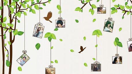 Moderní strom s fotorámečky 275 x 210 cm