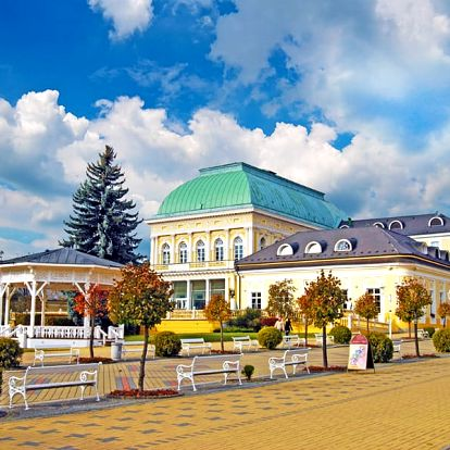 Františkovy Lázně pro DVA s polopenzí, wellness a slevami v hotelu blízko centra