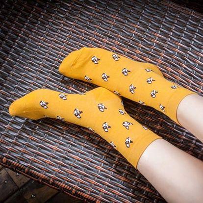 Dámské módní ponožky s originálními motivy - více variant