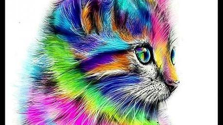 Sada pro výrobu vlastního obrazu - barevná kočka - 30 x 30 cm